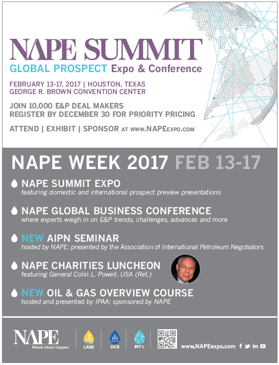 NAPE_Summit_Flyer.png